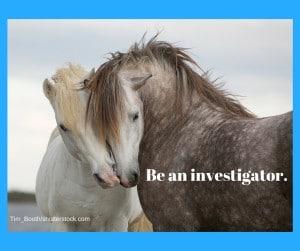 Be an investigator. (2)