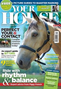 "My Contribution to the September Your Horse Magazine Article ""Take 5"""