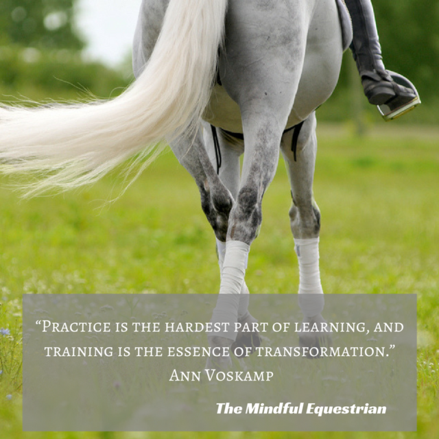 Making a Commitment to Your Riding Practice