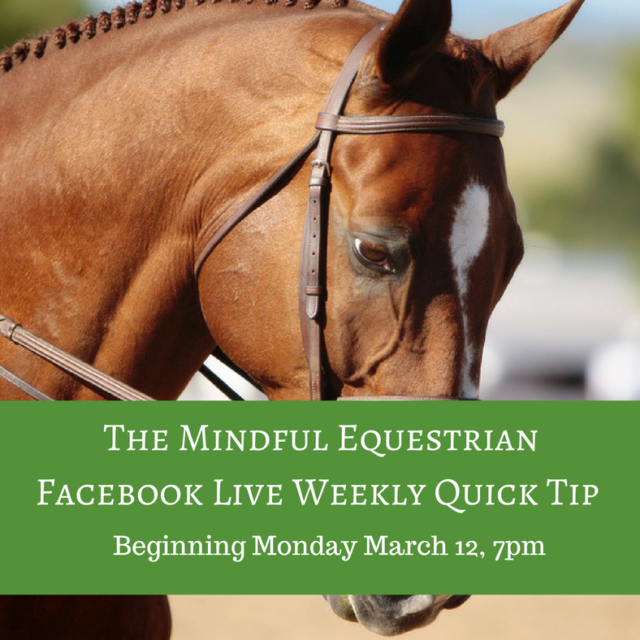 The Mindful Equestrian Facebook Live Weekly Quick Tip Mondays at 7 PM Beginning March 12